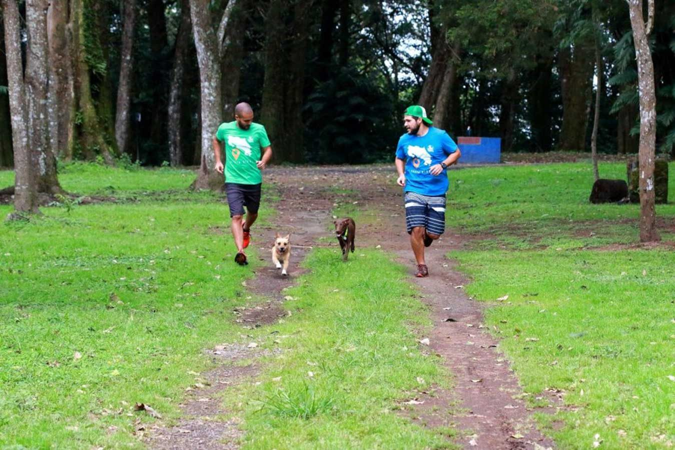 quebuenlugar-10-tips-hiking-con-perros